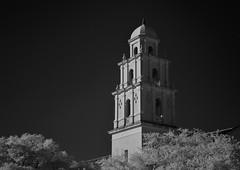 St. Anne Catholic Church (infrared) (dr_marvel) Tags: ir infrared houston tx texas blackandwhite monochrome catholic church tower religion faith
