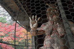 Nio Guardian at Temple's Gate (seiji2012) Tags: japan niiza heirinjitemple gate statue buddhism autumnfoliage 新座市 平林寺 山門 三門 金剛像 阿吽の像 紅葉