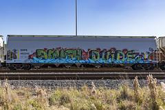 (o texano) Tags: houston texas graffiti trains freights bench benching advek dvide