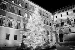 Natale a Siena (michele.palombi) Tags: italia 800asa film35mm analogicshot natale tuscany siena