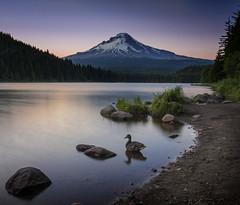 Trillium Sunset (sking5000) Tags: trillium lake oregon mt hood sunset