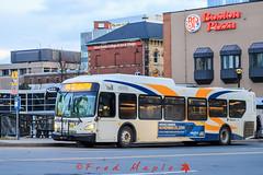 IMG_1692 (1fredmaple) Tags: bus transitvehicle transitphotography transitbus halifaxmetrotransit halifaxtransit hfxtransit xcelsior newflyerxd40 newflyer scotiasquarebusterminal hfxtransit1168 hfxtransitroute182