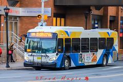 IMG_1676 (1fredmaple) Tags: scotiasquarebusterminal newflyerxd40 xcelsior newflyer transit bus transitphotography transitbus busphotography hfxtransit1183 hfxtransitroute185