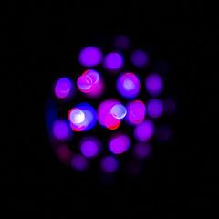 Purple Bokeh (adamopal) Tags: canon canon5d canon5dmkiii canon5dmarkiii purplebokeh bokeh lightmachine longexposure exposure black purple magenta pink red cyan blue white