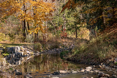 Sunnybrook Park Fall Scene 1 (george.novotny1) Tags: fall color water trees landscape reflection