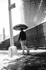 Under The Bridge (Airicsson) Tags: snow street urban nyc newyork city white winter cold snowstorm america usa cityscape storm brooklyn bridge umbrella silhouette park dumbo