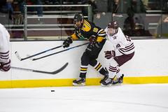 STO Hockey 12-6-2019-17 (healyk photography) Tags: yellow