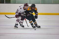 STO Hockey 12-6-2019-15 (healyk photography) Tags: yellow