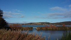 Beauly Firth from Caledonian Canal, Inverness, Oct 2019 (allanmaciver) Tags: north kessock beauly firth ble autumn shadesble sky cold crisp kyle railway line black isle caledonian canal inverness highlands allanmaciver