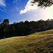 Young dads in suits playing with their kids (PsJeremy) Tags: summer melbourne slope grass wideangle people kids australia warrandyte bramleigh abcweather