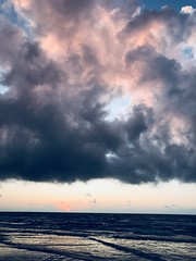 F4C8AA92-E537-4E88-B1FD-1F81CB63E76C (komissarov_a) Tags: mustang padre island portaransas texas summer fall gulfofmexico mexican gulf mustangfest tequila morning clouds sun pelican flying reflections sea ocean water fantastic oil platform waves pterodactyl wind seagulls view travel trip iphone7 komissarova streetphotography color rgb dynamic beauty fun jurassic восход солнце техас мустанг песок пеликаны стая отражения облака динамика