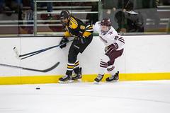 STO Hockey 12-6-2019-18 (healyk photography) Tags: yellow