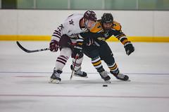 STO Hockey 12-6-2019-16 (healyk photography) Tags: yellow
