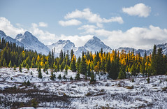 Chester Lake (ekgko) Tags: larches fall snow rockymountains alberta yellow trees