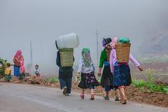 _J5K7921.0312.Mèo Vạc.Hà Giang (hoanglongphoto) Tags: asia asian vietnam nortvietnam northeastvietnam people life dalylife vietnamlife lifeinthemountains peoplehmong womenhmong road morning mist peoplegroup go gohom walkingontheroad gomarket womengomarket canon canoneos5dmarkii đôngbắc hàgiang mèovạc conngười cuộcsống đờithường buổisáng sươngmù phụnữ ngườihmông phụnữhmông conđường đibộ đichợ vềnhà phụnữđichợ cuộcsốngvùngcao zeissdistagont235ze earlyfrost earlymorningfog sươngsớm sươngmùhàgiang northernvietnam lifeofpeoplehighlandinvietnam cuộcsốngcủangườivùngcao travelportraits longnguyenflickr longnguyen hoanglongphoto asianlife asialife