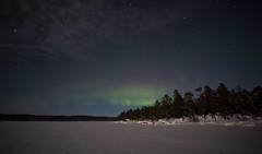 aurora 5.12.2019 (Hotel Korpikartano) Tags: northernlights auroraphotography auroraborealis nightphotography revontulet hotelkorpikartano inarilapland polarnight