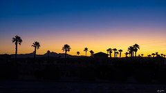colorful sunrise (kleiner_eisbaer_75) Tags: barstow desert wüste usa california kalifornien sunrise sonnenaufgang colorful farben palmen palm trees silhouette ngc