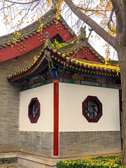 Building with Octagonal windows and gingko leaves.jpg (melissaenderle) Tags: architecture shaanxi buddhism xian asia seasons autumn weather china religion fall season