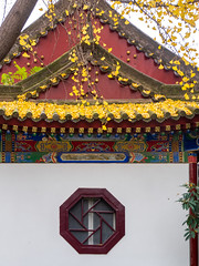 Octagon Window and Yellow Gingko leaves.jpg (melissaenderle) Tags: architecture shaanxi buddhism xian asia seasons autumn weather china religion fall season