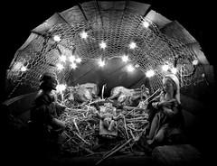 quasi Natale (fotomie2009) Tags: valleggia presepe presepio crib nativity scene natività monochrome monocromo bw christmas natale festivity
