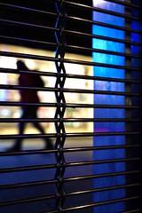 Blue fence (Guido Klumpe) Tags: blau candid street streetphotographer streetphotography strase hannover hanover germany deutschland city stadt streetphotographde unposed streetshot gebäude architecture architektur building perspektive perspective color farbe outdoor drausen minimal minimalism minimalistisch simple reduced night nightshot nacht nachtaufnahme longexposure kontrast contrast gegenlicht shadow schatten silhouette spiegelung mirror reflection reflected blue