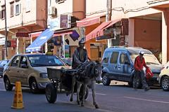 Marrakech (Hendrik van Zeldenrust) Tags: marokko morocco maroc marrakech marrakesh hendrikvanzeldenrust vanzeldenrust zeldenrust koninkrijkmarokko northafrica royaumedumaroc maghreb المغرب almaġrib ezel donkey esel âne burro
