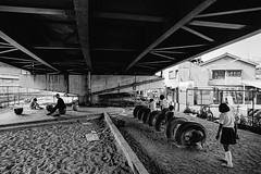 memories (3190)B660 (soyokazeojisan) Tags: japan osaka city street park people bw blackandwhite monochrome analog olympus m1 om1 21mm film trix kodak memories 1970s