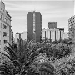 Barcelona (Koprek) Tags: rolleiflex28f film analog 6x6 120 barcelona spain october 2019 fomapan 100 architecture