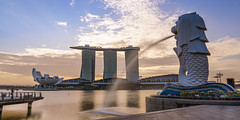 Dawn of Merlion (EriccpSam) Tags: dawn merlion marina bay singapore marinabay sony a7iii light sky city architecture urban water fountain