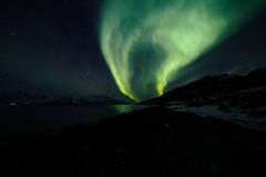 Lady Aurora (photographybyjoss ↟↟) Tags: auroraborealis nordic norway northernlights northernnorway north lights green norrsken josefinekarlsson photographybyjoss arcticcircle arctic nature landscape landschaft