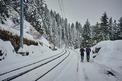 No Excuses (cszar) Tags: captureone12 switzerland schweiz prime rigi snow sports winter schwyz fuji