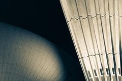 Opera House - Sydney (xsloba) Tags: australia operahouse sydneyharbour sydney blackandwhite architecture nikond750 sigma 35mm 14 art