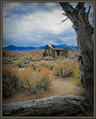 1074. Eastern Sierra Nevada 64 - Frank Sam's Cabin 5 (Oscardaman) Tags: nikond850nikkor2470mmforinquiresaboutanyofmyphotos pleaseemailmeatoscarwitzgmailcom 1074 eastern sierra nevada 64 frank sams cabin 5