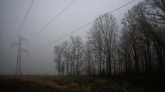 Quand les lignes se perdent dans la brume (Glc PHOTOs) Tags: 20191205140829glc5382nikond85024mmdxo glcphotos nikon d850 fx full frame 45mpixel tamron sp 2470mm f28 di vc usd g2 tamronsp2470mmf28divcusdg2 a032 paysage landscape brume brouillard fog