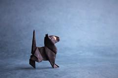 Nosy Cat - Oriol Esteve (pierreyvesgallard) Tags: origami nosy cat oriol esteve kitten cute animal pussy paper papercraft