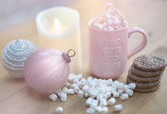 Too Cute To Care 💕 #smileonsaturday (KissThePixel) Tags: christmas pink december candle marshmallows mug biscuits smileonsaturday mugswithwords macro closeup 50mm nikon soft chocolate pastel nikkor tabletop f12 chocolatebiscuit pastelpink nikkor50mmf12 tabletopphotography nikkorf12 nikondf stilllife kitchen stilllifephotography creativephotography toocutetocare creativecomposition dreamingoflight kissthepixel bokeh bauble christmasbauble