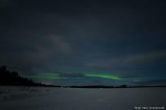 Northern light! (petergranström) Tags: approved northern light norrsken woods träd skof forrest lake sjö sky himmel cloud moln shrubs buskar