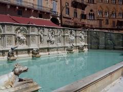 Siena_I Bottini_01