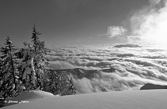 Nebbia_forte Campolongo5 (silvano fabris) Tags: montagna mountain neve snow paesaggio landscape natura nature wildlifephotography canonphotography