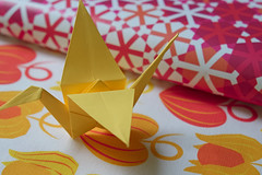 Hozuki fabric and cosmati giftwrap (nekineko) Tags: spoonflower roostery digitaldesign graphicdesign textiledesign