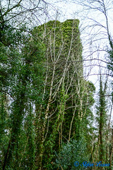 Cappanacush Castle, County Kerry (Salmix_ie) Tags: cappanacush castle ruin templenoe county kerry overgrown 1440 conchur osullivan mór family cromwell william petty sir john bonnie prince charlie jacobite rising 1745 15th century nikon nikkor d500 november 2019
