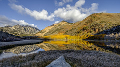 North Lake Fall (Jeff Sullivan (www.JeffSullivanPhotography.com)) Tags: north lake eastern sierra fall colors aspen trees land landscape nature travel photography bishop california usa canon 5d mark iv photo copyright 2018 jeff sullivan october reflection inyo county