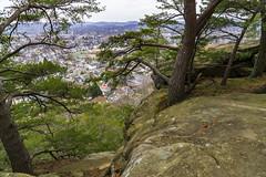 Mt. Pleasant_DSC9527 (GmanViz) Tags: gmanviz color sonya6000 bluff trees lancaster ohio