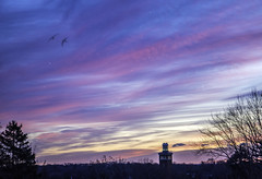 Morning Colors (JMS2) Tags: scenic dawn sunrise pastels sky nature landscape clouds outdoor