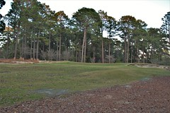 Mid Pines #17 pitch to green 593 (tewiespix) Tags: midpines southernpines pinehurst northcarolina donaldross chrisfranz golfcourse kyle franz