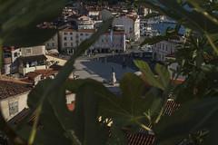27082018croazia-_DSC6524 (veronesi.roberto) Tags: pira slovenia sea mare holiday travel landscapes