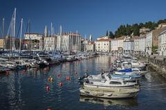27082018croazia-_DSC6484 (veronesi.roberto) Tags: pira slovenia sea mare holiday travel landscapes