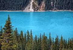 Turquoise Colored Water of Peyto lake, Banff National Park, Alberta Canada (PhotosToArtByMike) Tags: peytolake mistayarivervalley banffnationalpark canadianrockies icefieldsparkway banff albertacanada bowsummit glacierfedlake bowsummitobservationdeck observationdeck mountain mountains alberta billpeyto bowriver mistayariver