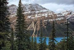 The Snow Capped Caldron Peak and Peyto Lake in Banff National Park (PhotosToArtByMike) Tags: peytolake caldronpeak mistayarivervalley banffnationalpark canadianrockies icefieldsparkway banff albertacanada bowsummit glacierfedlake bowsummitobservationdeck observationdeck mountain mountains alberta billpeyto bowriver mistayariver