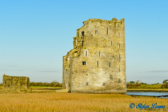 Carrigafoyle Castle, County Kerry (Salmix_ie) Tags: carrigafoyle castle county kerry river shannon guardian limerick 1490 conor liath o'connor carrig an phoill tower house gerald fitzgerald 15th earl desmond spanish soldiers 1579 sir william pelham lord justice ireland island scattery nikon nikkor d500 december 2019